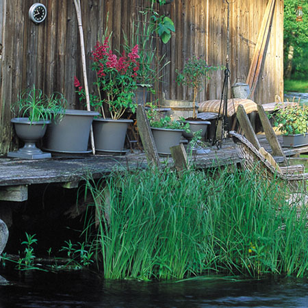 Inspiration Eden Botanica båthus